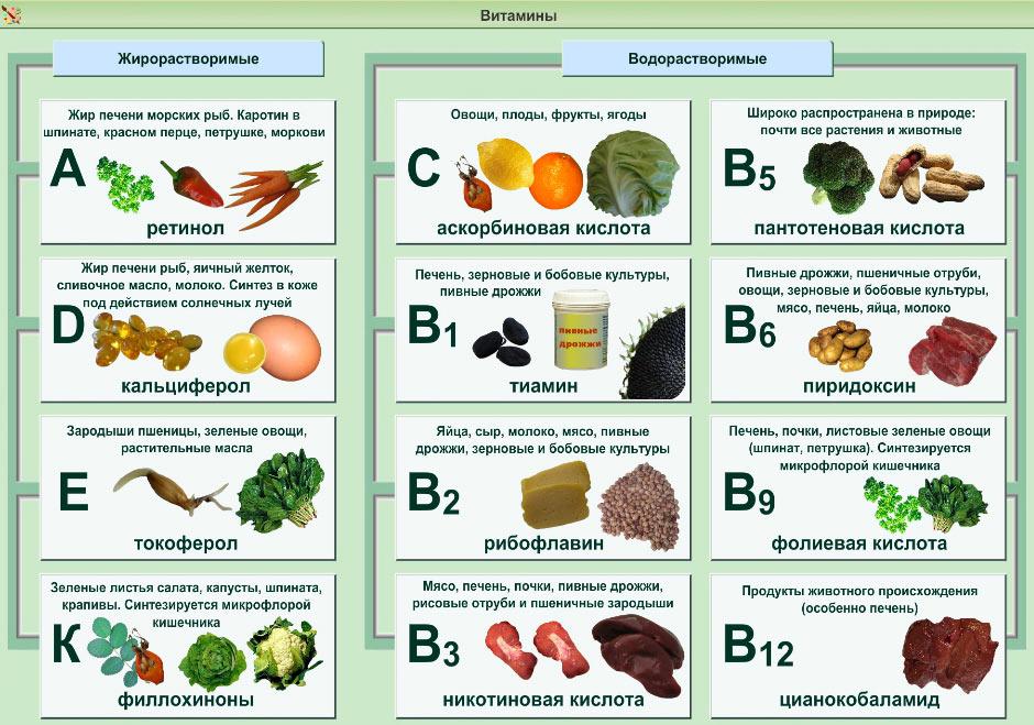 Витамины в рационе питания