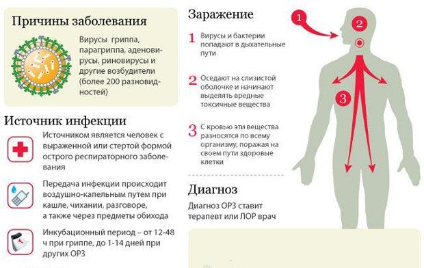 Причины гриппа
