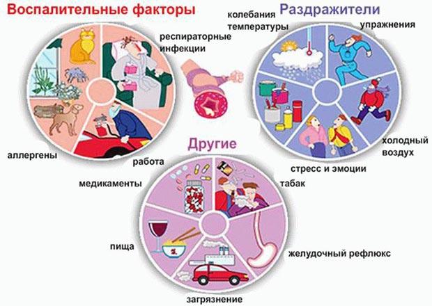 Причины развития бронхита